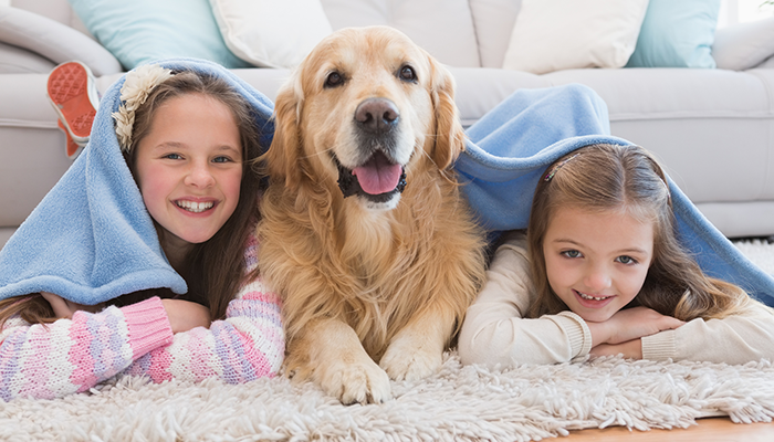 Children and pet dog enjoying the comfortable temperature in their home.